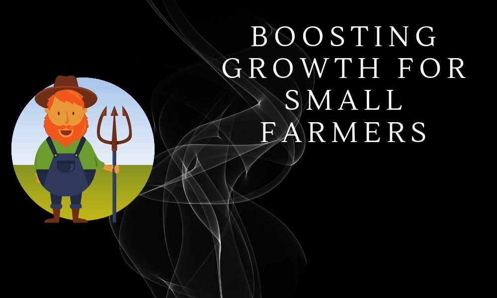 Blockchain Use Case: Boosting Growth for Small Farmers