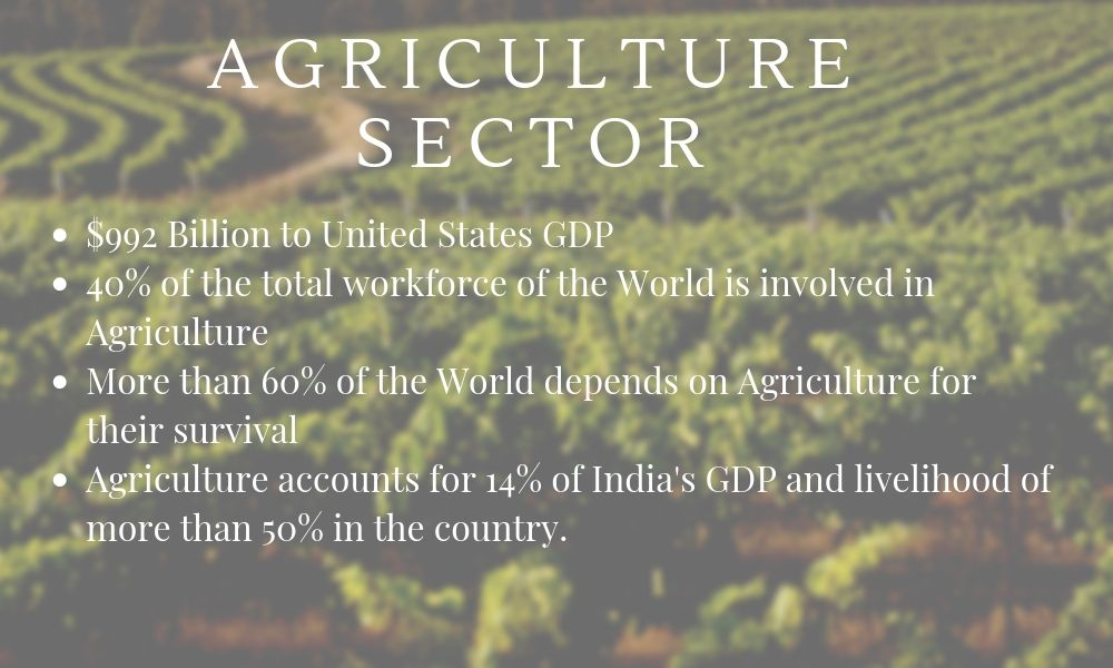 Agriculture Sector Statistics